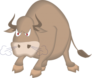bull-46369_640